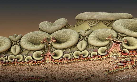 Martian Mushrooms