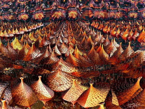 Tent City4